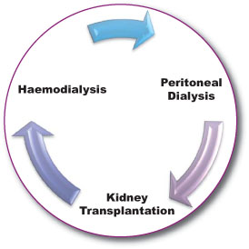 Renal Replacement Cycle