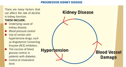 Progressive Kidney Disease